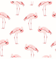 Pink flamingo bird standing seamless pattern vector
