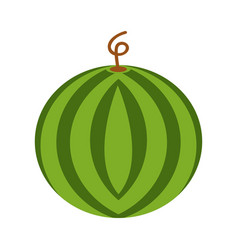 watermelon icon in flat style vector image