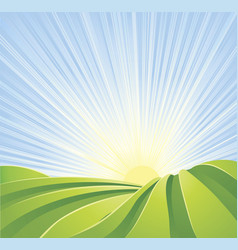 Idyllic green fields with sun rays and blue sky vector