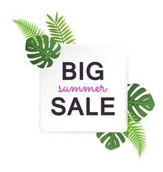 big summer sale banner with tropical leaves vector image