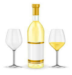bottle of white wine with glasses vector image