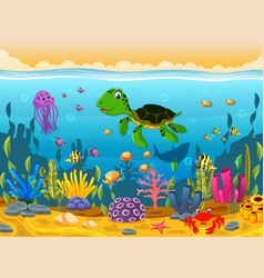 cartoon turtle underwater vector image