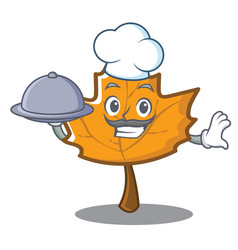 Chef maple character cartoon style vector