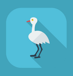 Flat modern design with shadow icons ostrich vector