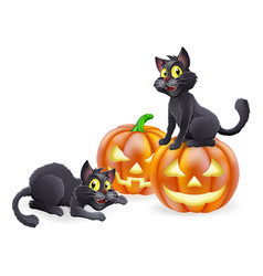 Halloween cats and pumpkins vector