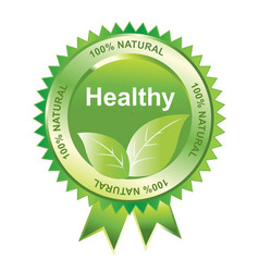 healthy seal vector image