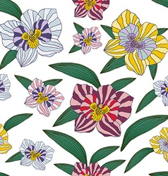 Orchid pattern vector image
