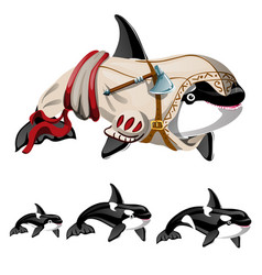 Set killer whale or orca isolated on a vector
