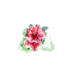 watercolor hand painted petunia flower vector image
