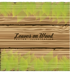 shiny leaves on wood vector image