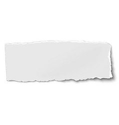 white oblong paper tear isolated on white vector image vector image