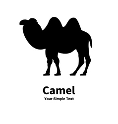 Silhouette of a Bactrian camel vector image vector image