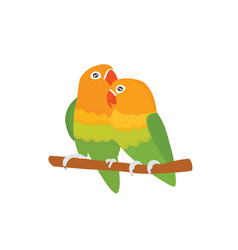 Cartoon tropical lovebird parrot wild animal bird vector