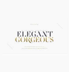 Elegant alphabet letters font and number classic vector