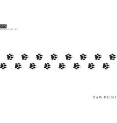 tiger paw prints vector image