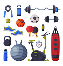 various sport equipment and accessories set vector image