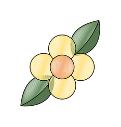 yellow flower leaves natural flora vector image