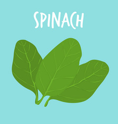 fresh spanich on blue balckground vector image vector image