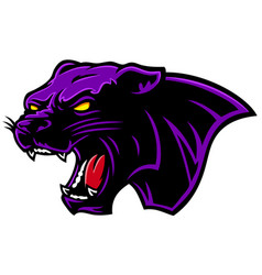 Cartoon angry black purple panther head vector