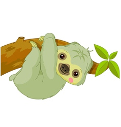 cartoon Sloth vector image