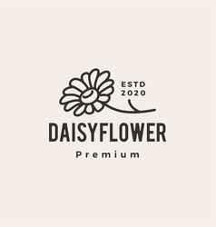 daisy flower hipster vintage logo icon vector image