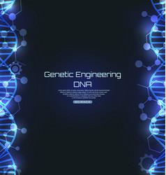 dna texture science template genetic engineering vector image
