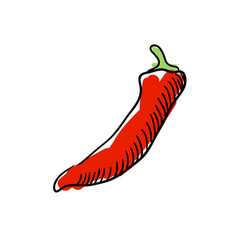 red chilli pepper hand drawn icon vector image