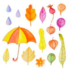 set watercolor autumn design elements vector image