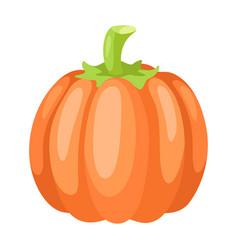 stylized pumpkin vector image