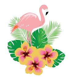 flamingos flower vector image