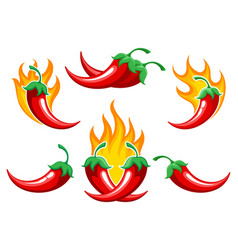 Chili pepper on fire set vector