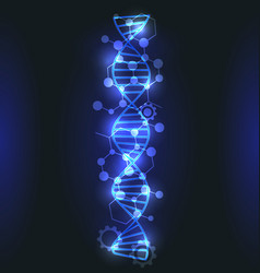 Dna molecule structure with glowing effect vector