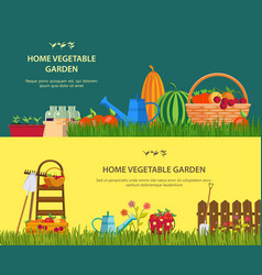 farm with vegetables and garden items vector image
