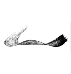 make-up cosmetic mascara brush stroke on white vector image