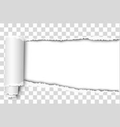 Oblong snatched hole in transparent sheet vector