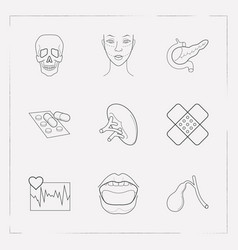 Set of anatomical icons line style symbols with vector