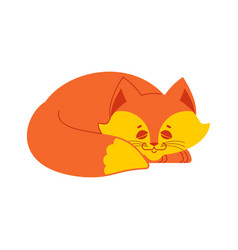 Sleeping fox isolated asleep wild beast on white vector