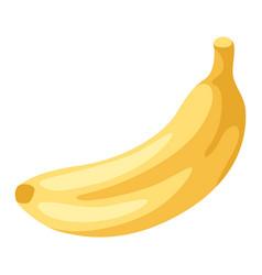 stylized banana vector image