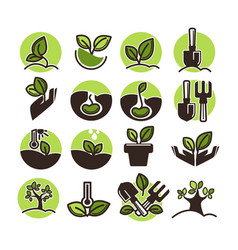 Tree planting and green gardening horticulture vector