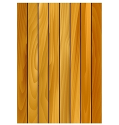Oak pattern background with wooden texture vector image vector image