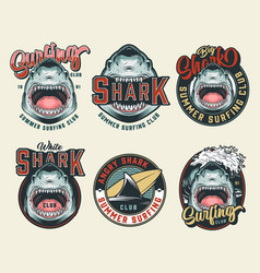 Colorful vintage surfing club badges vector