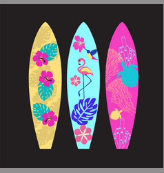 set of surfboards isolated on black background vector image