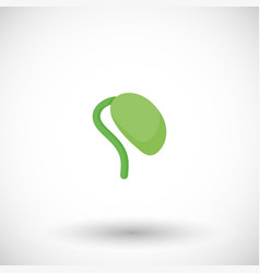 soy bean sprout flat icon vector image
