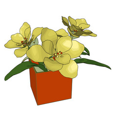 yellow flowers in a pot on white background vector image