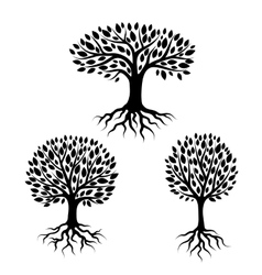 Set of abstract stylized trees with roots and vector image vector image