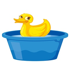 Duck in a tub vector image