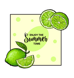 banner label card design with limes and place vector image vector image