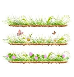 Set green grass on ground Grass flowers clover vector image