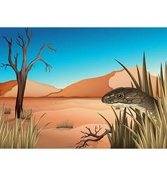 A reptile at desert vector
