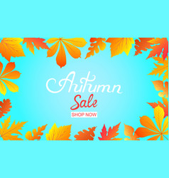 autumn sale poster with falling leaves hand vector image